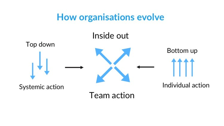 How organisations evolve